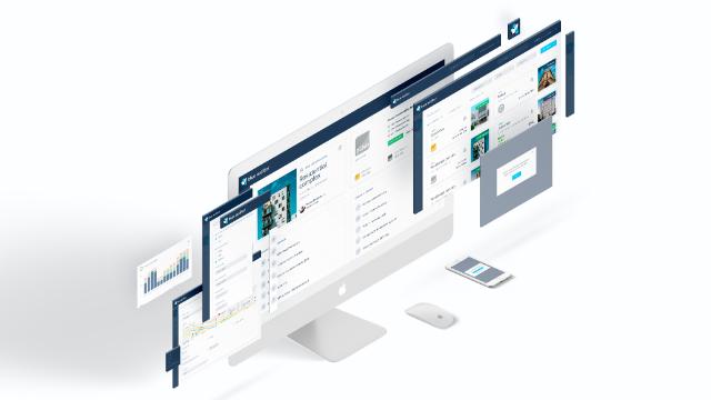 blue auditor marketplace